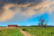 MD Extension Annual Report. Countryside dirt road on a Maryland farm leading to a red barn -Getty Image.