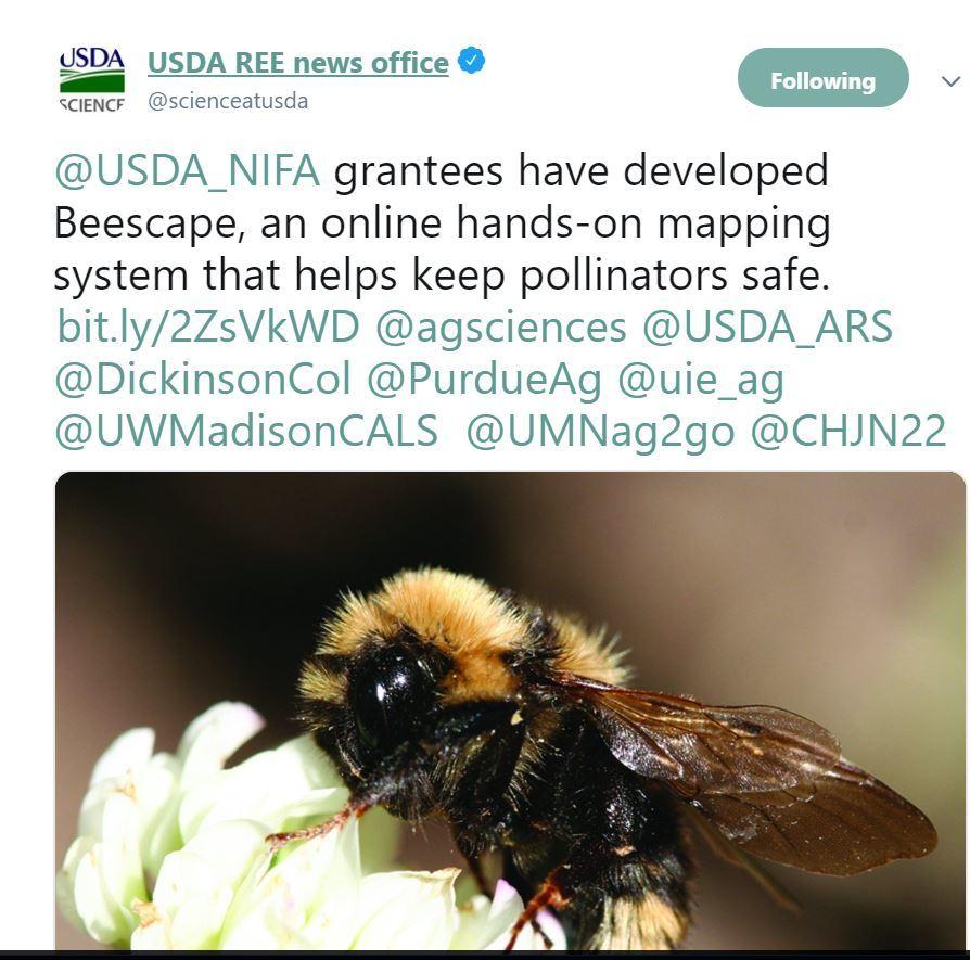Beescape. USDA NIFA Impact. Pollinator Week 2019