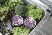 Leafy greens soaking in sink to remove dirt. Getty Images. USDA NIFA Impacts.