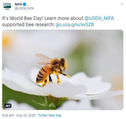 NIFA World Bee Day tweet