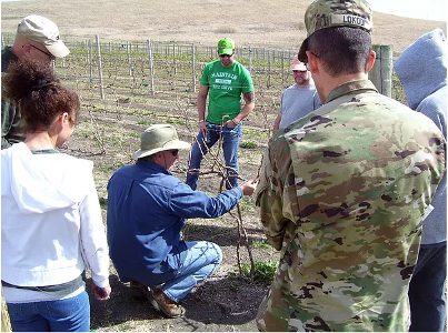 Veterans participate in a SAVE Farm training. Photo courtesy of SAVE Farm.