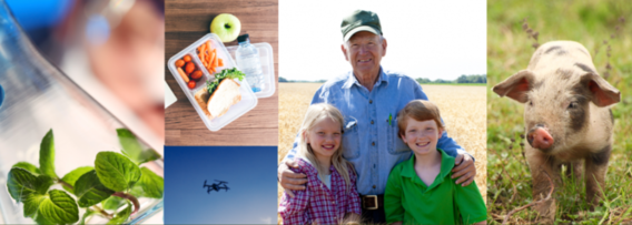 Agriculture and Food Research Initiative - Foundational and Applied Science Program