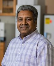 John Bekkers Professor of Poultry Science Harshavardhan Thippareddi. Photo courtesy of University of Georgia.