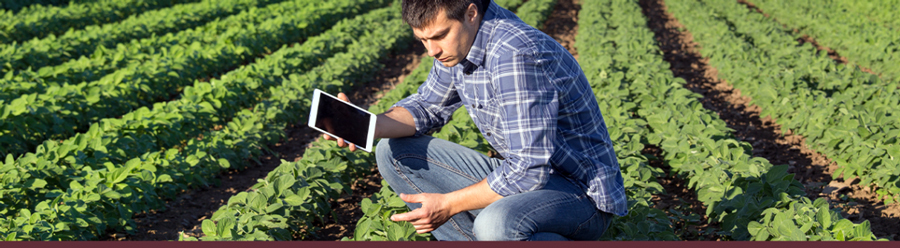 Funding Opportunity: FBMB Competitive Grants Program. Image of man in field; courtesy of Getty Images.