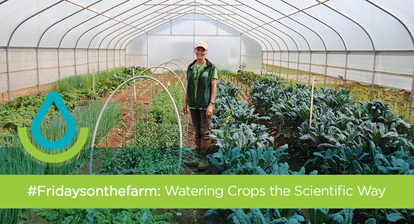Watering Crops the Scientific Way
