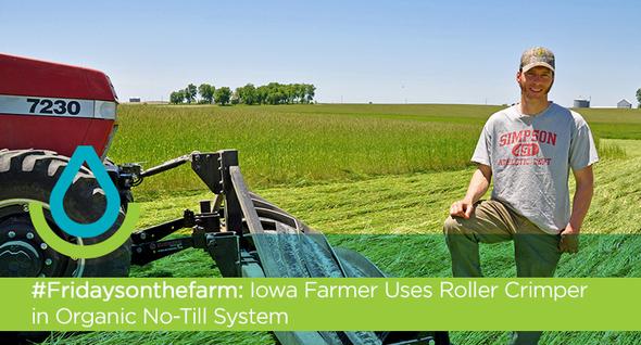 Iowa Farmer Uses Roller Crimper in Organic No-Till System