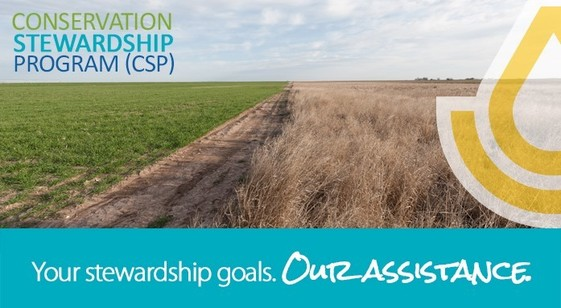USDA Offers Renewal Options for Expiring Conservation Stewardship Contracts