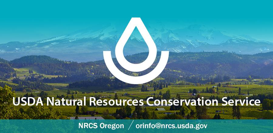 Oregon Press Release Header