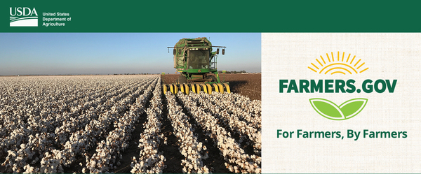 Seed Cotton Recourse Loans