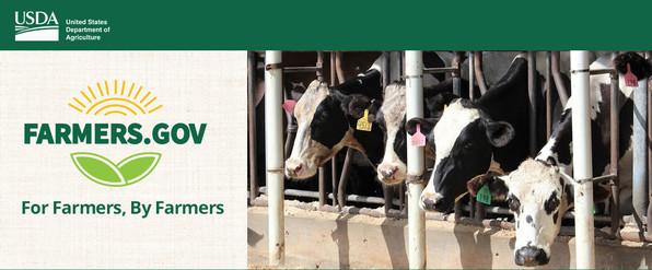 Dairy Margin Coverage