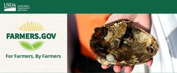 Oysters Back to Bissel GovDelivery