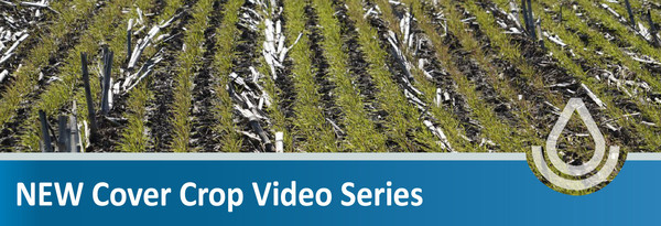 Cover Crop Video Series