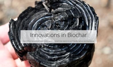 Innovations in Biochar