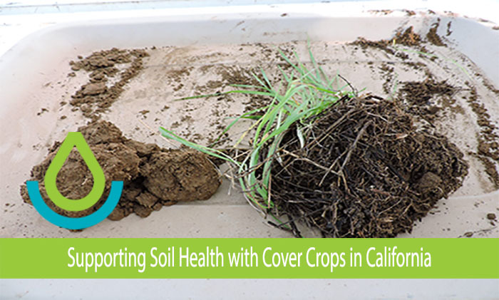 CAPMC Soils
