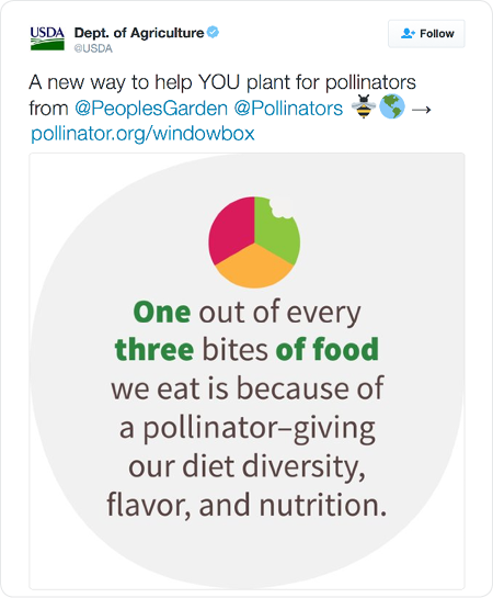 A new way to help YOU plant for pollinators from @PeoplesGarden @Pollinators  → http://www.pollinator.org/windowbox