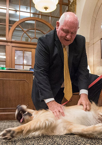 Agriculture Secretary Sonny Perdue, a trained veterinarian, prescribes a much-needed belly rub on Bring Your Dog to Work Day at USDA this week