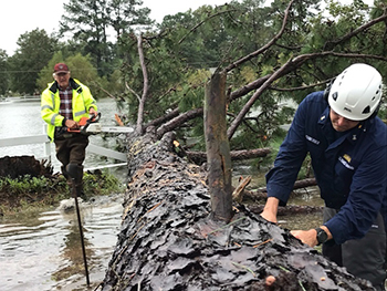 Coast Guard crews help clear downed tree