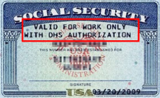 Restricted Social Security card