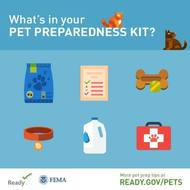 Pet preparedness kit