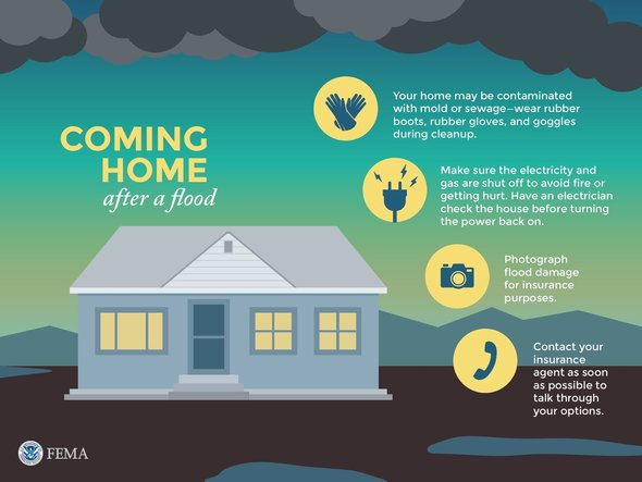 Coming Home After a Flood Infographic