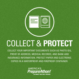 Collect and Protect Important Documents Graphic