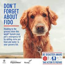 Don't Forget About Fido Pet Preparedness Graphic