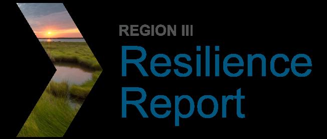 Region III Resilience Report
