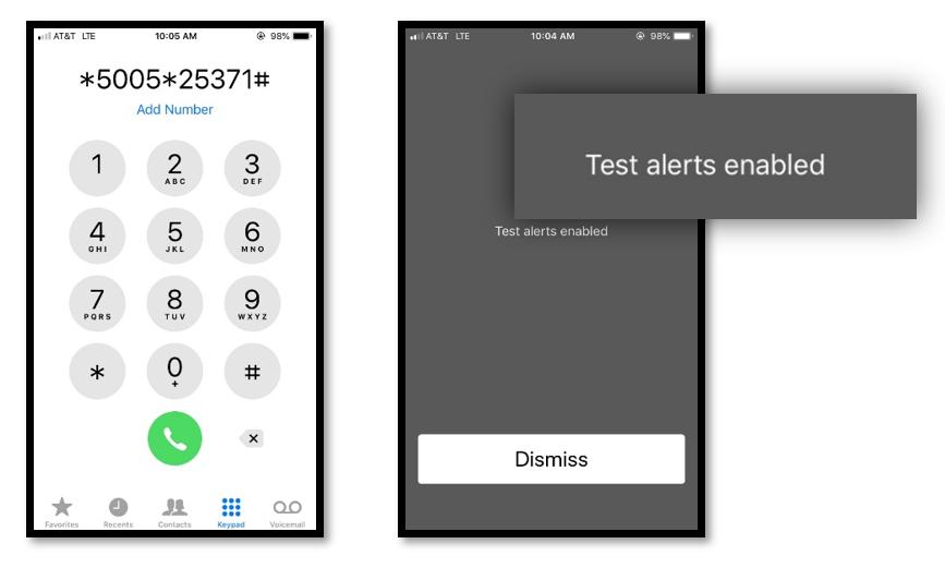 iOS Alerts Setting Screen