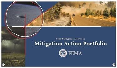 FEMA Mitigation Action Portfolio