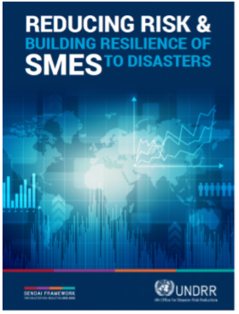 SMEs Report