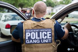 HSI Gang op