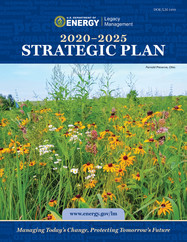 LM's 2020-2025 Strategic Plan Released