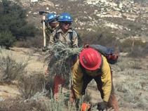 CCC cleans up fire berm