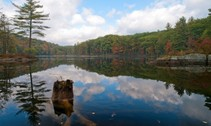 lake reflection with fall trees. photo by usfws
