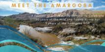 Amargosa festival flyer