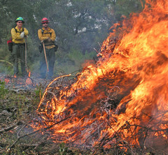 Two Firefighters stand with tools watching fire burn