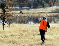 Pheasant hunter stalks prey with rifle