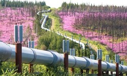 Alaska pipeline. Photo by Craig McCaa, BLM.