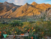 2019 planner cover of Owens Peak. Photo by Bob Wick, BLM.