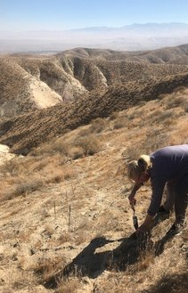 BLM conducts soil samples for the detection of Valley Fever. Photo by BLM.