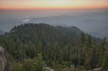 Case Mountain Giant Sequoias. Photo by BLM.