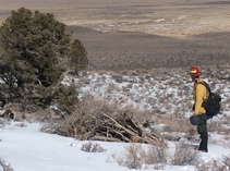 Pile burning operations on public lands. Photo by Troy Maguire, BLM.