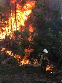 Wildland firefighting. Photo by Kyle Clendenen, BLM.