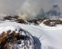 Pile burning in Applegate. Photo by George Jolicouer, BLM.