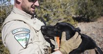BLM LE and K9. Photo by the Santa Fe New Mexican.