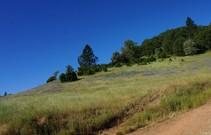 Magnolia Ranch. Photo by Monte Kawahara, BLM.