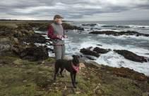 Author Bob Lorentzen walks with his dog along the Noyo Headlands Coastal Trail. Photo by John Burgess, The Press Democrat.