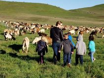 Goats and students at Fort Ord. Photo by Tammy Jakl, BLM.