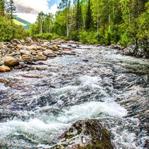 CA river flowing. Photo by CDWR.
