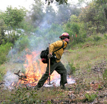 Firefighter lights Rx burn. Photo by BLM.